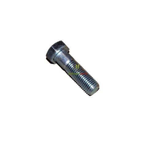 ŚRUBA SPRZĘGŁA GUMOWEGO M16X55 KL. 10.9 235587 / 215190