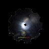TALERZ BRONY UZĘBIONY FI 30 X 30 FI 460 MM KONGSKILDE TERRA D 7201003209 , 460-304GZ