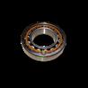 Łożysko SDF 2.2423.013.0