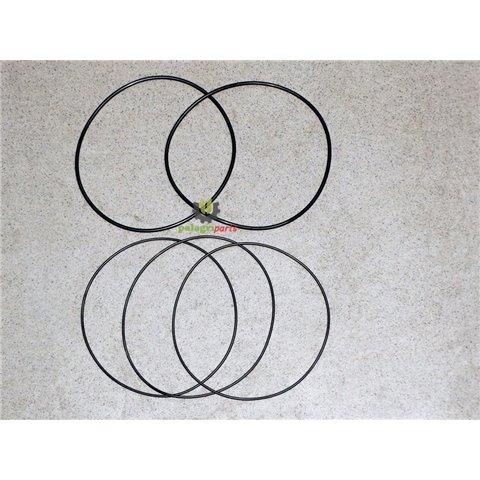 Zestaw oringów tulei cylindra same lamborghini